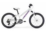 Детский велосипед Merida Matts J20 Girl (2015)
