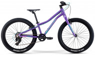 Велосипед Merida Merida Matts J24+ Eco (2021) (2021)