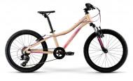 Велосипед Merida Matts J20 Eco (2021) (2021)